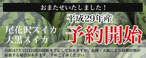 平成29年 尾花沢スイカ 予約開始